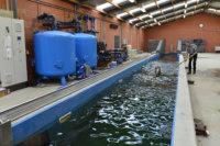 Trainingszwembad paarden met betonkernactivering. Geothermie & bouw: Geo-Thermics & Scheldimmo.